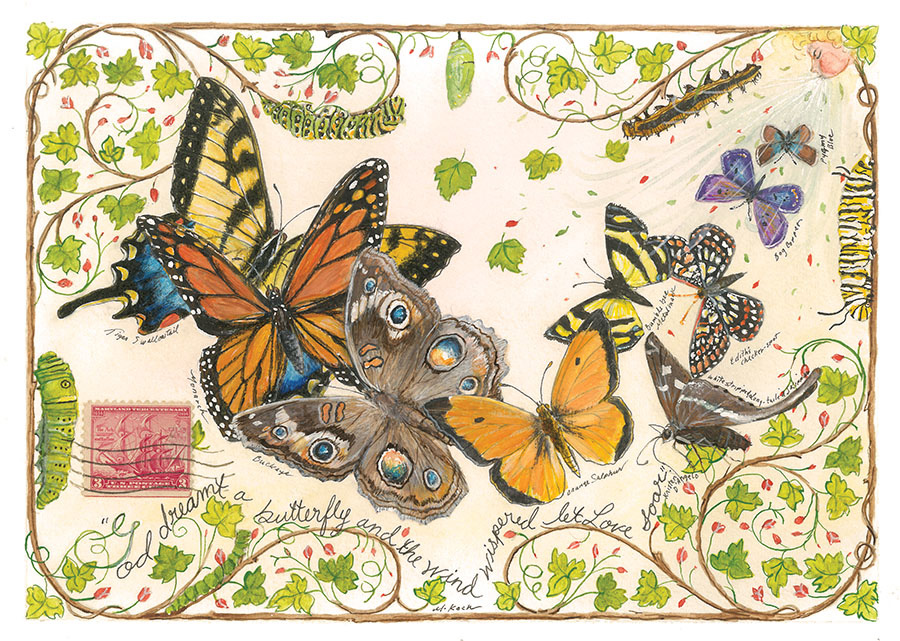 Collectible Butterfly Postcards